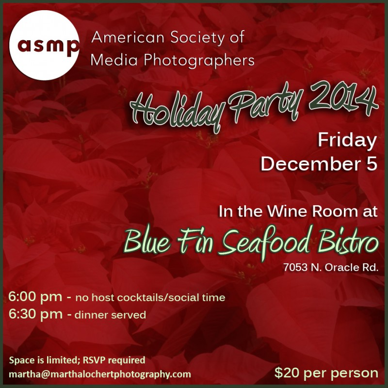 HolidayParty2014_0783